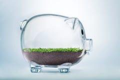 Prosperity concept Royalty Free Stock Image