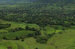 Prosperous Indian Farmland Landscape-III royalty free stock photo