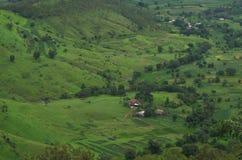Prosperous Indian Farmland Landscape-IV stock images