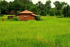 Prosperous Indian village royalty free stock photo