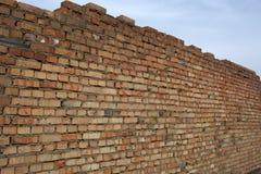Prospettiva del muro di mattoni Immagini Stock Libere da Diritti