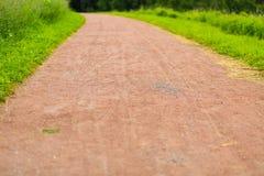 Prospettiva della terra della strada del fondo dell'erba verde del modello di estate Fotografia Stock