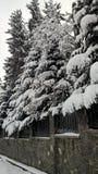 Prospettiva piacevole di vista la neve sugli alberi e pietre ed acciaio Fotografie Stock Libere da Diritti