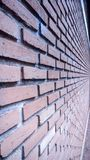 Prospettiva rossa del muro di mattoni fotografia stock libera da diritti