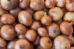 Prospettiva sopraelevata cruda degli ambiti di provenienza della frutta e della verdura della cipolla, parte di una collezione de Immagini Stock