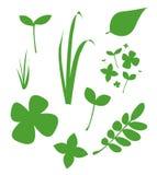 Prosta ładna ustalona ilustracja świeża zielona trawa, liść, minimalizm Mo?e u?ywa? dla poczt?wek, ulotek i plakat?w, Ogrodowy el ilustracji