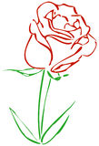 prosta czerwieni róża Obrazy Royalty Free