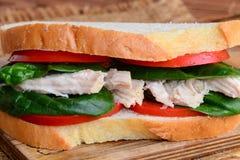 Prosta kurczak kanapka Kurczak kanapka z pomidorami i szpinakiem na drewnianej desce zbliżenie Obraz Stock