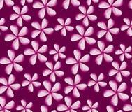 Prosta kwiat dekoracja Obraz Royalty Free