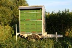 Prosta podwórko zieleń i czerwona drewniana ulowa przyczepa Zdjęcie Stock