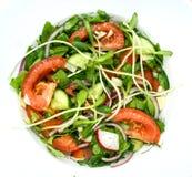 Prosta sałatka pomidory, ogórki, czerwone cebule, pieprze, rzodkiew, koper, basil, czosnek i przyprawiający z cytryna sokiem, oli fotografia stock