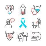 Prostatitis εικονίδια γραμμών Συμπτώματα, αιτίες, επεξεργασία Διανυσματικά σημάδια για τη γραφική παράσταση Ιστού στοκ φωτογραφία