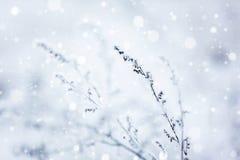 proste tła obraz redaguje charakteru zimy nosicieli Styczeń 33c krajobrazu Rosji zima ural temperatury Zima Obrazy Stock