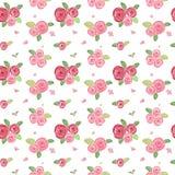 Prostej róży bezszwowy wzór Fotografia Royalty Free
