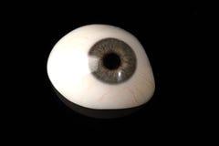 Prosthetic eller okulär protes för Glass öga på svart Royaltyfri Fotografi