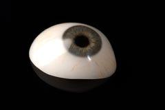 Prosthetic eller okulär protes för Glass öga på svart Arkivfoto