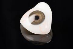 Prosthetic eller okulär protes för Glass öga på svart Arkivbilder