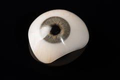 Prosthetic eller okulär protes för Glass öga på svart Royaltyfria Foton
