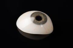 Prosthetic eller okulär protes för Glass öga på svart Royaltyfri Foto