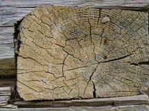 Prostokątny drewniany blok Obraz Stock