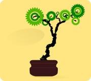 Prosty Bonsai drzewo Zdjęcia Stock