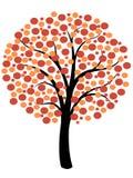 Prosty jesieni drzewo Fotografia Royalty Free