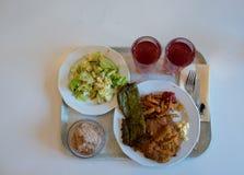 Prosty lunch na tacy z wiener dłoniakami z i schnitzel szpinaka blinem czekoladowym mousse dla deseru i zdjęcia stock