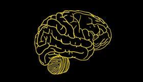 Prosty mózg ilustracji