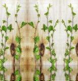 Prosty projekt, potomstwa zielenieje czereśniowe gałąź pojęcie ekologia obrazy royalty free