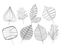 Prosty stylowy liścia clipart Obrazy Royalty Free