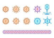 Prosty wirusowy diagram Fotografia Royalty Free