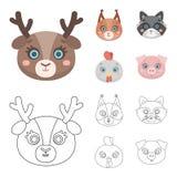 Protéine, raton laveur, poulet, porc Icônes réglées de collection de museau animal dans la bande dessinée, actions de symbole de  Illustration Stock