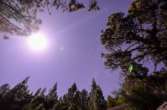 Protagoniza no céu na noite foto de stock royalty free
