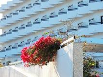 Protaras, turismo, centro turístico, hotel, playa, viaje, Chipre Fotografía de archivo