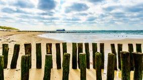 Proteção da erosão de praia com um grande cargueiro do oceano que vem do Mar do Norte no fundo e que dirige o porto de Vlissingen imagem de stock