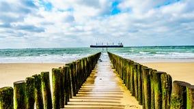 Proteção da erosão de praia com um grande cargueiro do oceano que vem do Mar do Norte no fundo e que dirige o porto de Vlissingen imagem de stock royalty free