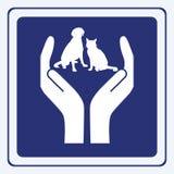 Proteção do animal de estimação Fotografia de Stock
