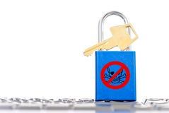 Proteção do cabouqueiro de computador Fotografia de Stock Royalty Free