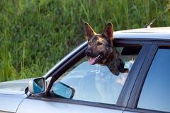 Proteção do carro Imagem de Stock Royalty Free