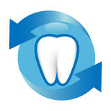 Proteção do dente Foto de Stock