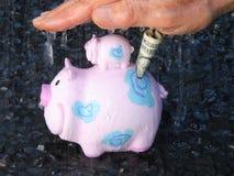 Proteção do dinheiro Fotos de Stock Royalty Free