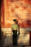 Proteção no dever de sentinela do suporte Fotos de Stock Royalty Free