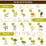 Proteína do vegetariano infographic ilustração stock