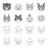 Proteïne, wasbeer, kip, varken De dierlijke pictogrammen van de snuit vastgestelde inzameling in overzicht, de zwart-wit voorraad Stock Foto's
