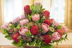 Protea bouquet Stock Photos