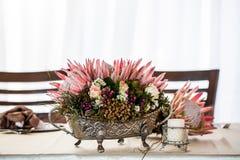 Proteas in zilver Royalty-vrije Stock Foto's
