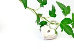 Protecção ambiental. imagens de stock royalty free