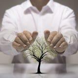 Protecção ambiental Foto de Stock Royalty Free