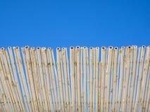 Protección de bambú del sol del compañero del bastón Cielo azul en fondo Imágenes de archivo libres de regalías