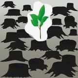 Protección de bosques contra el corte Fotos de archivo libres de regalías